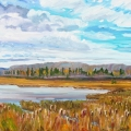 brucethompson-n6023-slough-near-hudsons-hope-october-30x40