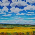 brucethompson-n7008-title-prairie-lake-36x48