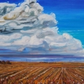 brucethompson-n7013-storm-coming-spring-30x40