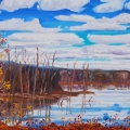 brucethompson-n7027-swamp-near-high-level-24x36