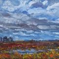 brucethompson-n8014-slough-somewhere-in-alberta-16x20