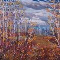 brucethompson-n12010-birch-thicket-near-devon-30x40