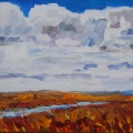 brucethompson-n12021-prairie-creek-16x20-2014