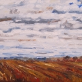 brucethompson-n12027-after-harvest-16x20-2014