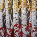 brucethompson-n13010-birch-grove-36x72