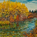 brucethompson-n13014-birch-trees-and-pool-buffalo-lake-24x30