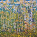 brucethompson-n13020-birch-thicket-24x24