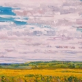 brucethompson-n13040-canola-field-near-smoky-lake-august-30x40