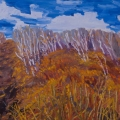 brucethompson-n13041-birch-grove-and-trail-buffalo-lake-30x40