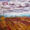 brucethompson-n11022-the-windrow-near-peace-river-18x24
